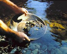 Gold Rush Overview   Photo:  Goldpanning on the American River