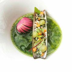 Tartare of Razor Fish, Cream of Celery, Cucumber and Radish