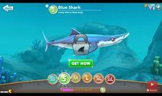 The shark that has a sleek body, Blue shark from hungry shark world.