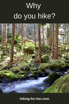 Wondering why people hike? Or do you already have an answer to the question Why do you hike? See all 4 reasons Hiking For Her loves to hit the trail. #whyhike #hiking #hikingforher #womenhikers Backpacking Tips, Hiking Tips, Hiking Training, Bucket List Destinations, Fat Man, Happy Trails, The Hard Way, Camping With Kids, Day Hike