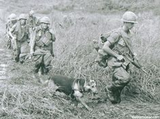 Handler of the 57th Scout Dog Platoon, 46th Infantry, 198th Brigade, Americal Division, carries an XM177 series rifle whilst on operations west of Chu Lai (I Corps). Photo taken: April 1970