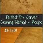 Perfect DIY Carpet Cleaning Method + Recipe.... used hot water, vinegar, and my mop. Took the mop, stuck it in the vinegar/water mix, squeezed the mop out, and mopped my carpet. Came out looking better than when I had used a steam cleaner. Took out coffee stains, and pet stains
