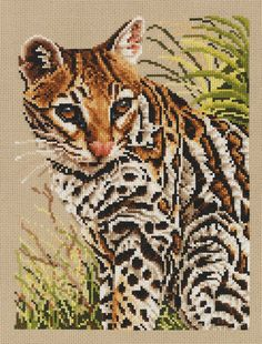 Ocelot counted cross stitch kit from Jayne Netley Mayhew