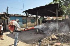 Perú Reportó Dos Casos De Fiebre Chikungunya Importados Desde RD