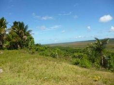 Linda Fazenda Em Trancoso - Linda fazenda em Trancoso com vista panoramica sobre o Vale dos Búfalos e do mar.