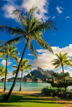 Four Seasons Resort Bora Bora, Motu Tehotu, Bora Bora, Society Islands, French Polynesia. Beautiful Places To Travel, Beautiful Beaches, Dream Vacations, Vacation Spots, Romantic Vacations, Italy Vacation, Romantic Travel, Society Islands, Photos Voyages
