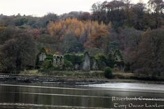Munster Blackwater happenings. Life along the Munster Blackwater.