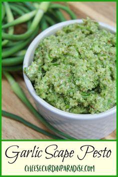 Recipe For Garlic Scapes, Garlic Scape Pesto, Garlic Pasta, Supper Recipes, Dip Recipes, Gourmet Recipes, Healthy Life, Healthy Food, Yummy Food