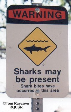 If the worst does happen and you find yourself being attacked by a shark, what should you do? If possible, fight back. Despite their ferocit...