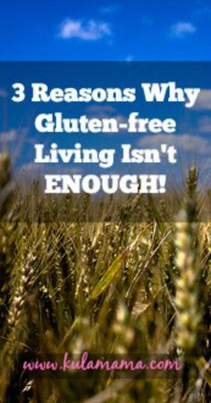 3 Reasons Why Gluten-Free Living Isn't Enough
