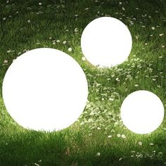 details Decoration ball light For indoor and outdoor. Garden Balls, Ball Lights, Blow Molding, Lighting Online, Back Gardens, Kugel, Light Up, Fence, Plants