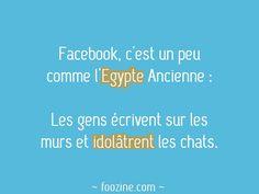 Facebook, c'est un peu comme l'Egypte Ancienne : Les gens écrivent sur murs et idolâtrent les chats.