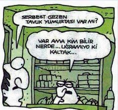 Serbest gezen tavuk Comedy Pictures, Videos Online, Good Times, Peanuts Comics, Laughter, Haha, Geek Stuff, Nerd, Cartoon