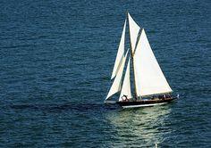 Le premier voilier d'Eric Tabarly. Un cotre aurique de 15 m conçu en 1898 par l'architecte écossais W. Fife III Jr. et construit en Irlande sous le nom de Yum.