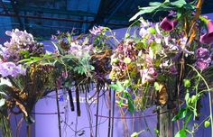 """Fleurop - Interflora World Cup Berlin Day 1. The first task, """"100% personal"""" was all about the finalists' personalities. Check out this design by Shauna Larsen from Australia, making off and interview on www.flowerweb.com..."""