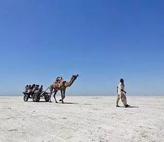 Ran ustav white rann Gujarat    INDIA