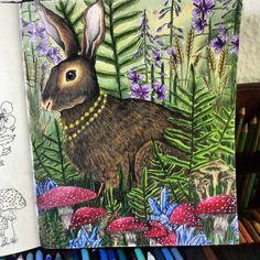 """Gefällt 228 Mal, 20 Kommentare - Steffie, deutschland, ♐ (@paintanddream) auf Instagram: """"Daydreams Hanna Karlzon #daydreams #hannakarlzon #prismacolorpencils #hase #rabbit"""""""