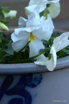 De grote tuinschoonmaak aktie