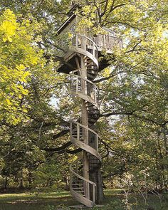 The Spiral House (Rambouillet Forest, France)    We're not sure if we are more impressed by the tree house itself or the staircase to get to it. For a dramatic and Earth-conscious construction, the builders chose to wind the spiral staircase around the trunk instead of chopping branches.