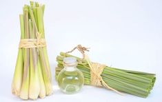 Have you ever tried using lemongrass oil? If not then you might want to check out these 21 fascinating lemongrass essential oil uses. Lemongrass Essential Oil Uses, Doterra Lemongrass, Lemongrass Oil, Essential Oils For Depression, Herbs For Depression, List Of Essential Oils, Antibacterial Essential Oils, Herbs For Anxiety