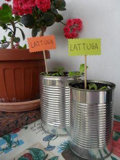 In food [and makeup] we trust: Il mio orto in vaso sul terrazzo!