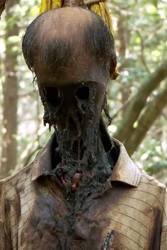 A terrifying specimen from suicide forest, Japan
