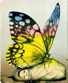 Graphic Prints, Moth, Art Drawings, Insects, Butterfly, Artwork, Artist, Painting, Animals