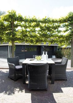 Astonishing Table For Outdoor Dining With Unique Rattan Chairs Also Elegant  Dove Black Shade With Astonishing Green Vegetation In Brick Patio