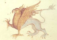 Medieval Bestiary : Griffin Gallery British Library, additional MS 42130, Folio 160v