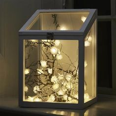 ACHICA   Frosted Rose LED String Light