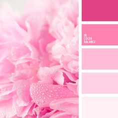 Unbelievably soft colors and sensual shades of pink in pastel hues. They merge in one, flowing smoothly and glistering with pale magenta and lilac in the. Monochrome and Hot Pink Wedding Inspiration For Extra Special Touch Pink Palette, Pastel Colour Palette, Colour Pallette, Colour Schemes, Pastel Colors, Color Combos, Colours, Pastel Pink, Lilac