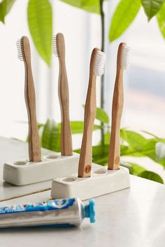 Ceramic Toothbrush Holder - Urban Outfitters