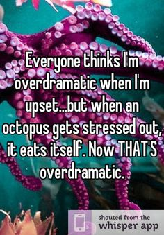 Everyone thinks I'm overdramatic when I'm upset...but when an octopus gets stressed out, it eats itself. Now THAT'S overdramatic.