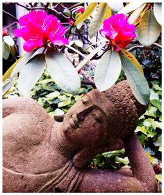 THE ZEN WORLD  & ces soins bien-être chez Tigre Yoga Club ✨
