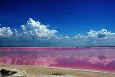 Las Coloradas Yucatan, Mexico