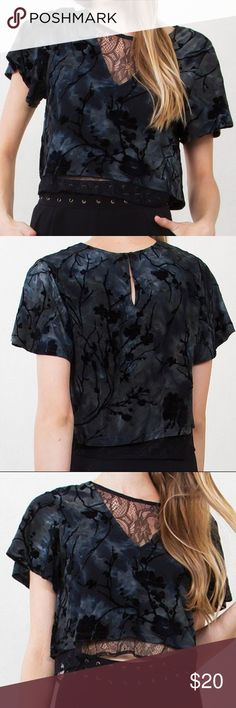 NWT Burn Out Velvet Lace Crop Top Burn Out Velvet Lace Crop Top  *Cropped Velvet Abstract Top with Lace Underlay  *92% Polyester, 8% Spandex  *Color: Multi (Black, Dark Grey and Dark Green)  *Made in China  *Hand Wash and Dry Clean Only Tops Crop Tops