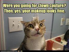 HAHAHAH. Burn from the kitty.