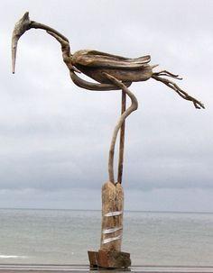 Driftwood Bird                                                                                                                                                                                 Plus