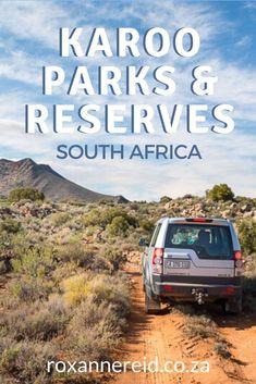 10 Karoo game reserves and nature reserves to visit - Roxanne Reid Kruger National Park, National Parks, Mountain Zebra, Private Games, Wildlife Safari, Mountain Bike Trails, Go Hiking, Game Reserve, African Safari