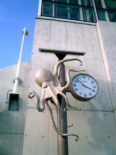 Akashi Okurakaigan octopus clock. Octopus Squid, Octopus Art, Release The Kraken, Giant Squid, Robin, Cuttlefish, Nautilus, Cthulhu, Calamari
