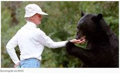 North Carolina Bear Lady Kay Grayson Killed By Beloved Bears She Handfed? Animal Cartoon Video, Cartoon Fish, Beautiful Horses, Animals Beautiful, Baby Animals, Funny Animals, N Carolina, Thru Hiking, Retriever Puppy