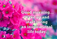 Good Morning - Daily Pictures, Photos and Wishes. #GoodDayWishes, #GOODMORNING, #MorningMessages http://greetings-day.com/good-morning-daily-pictures-photos-and-wishes.html