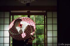 引き振袖で前撮り at 日吉大社 |*ウェディングフォト elle pupa blog*|Ameba (アメーバ)