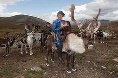 Les photographies fascinantes des derniers éleveurs de rennes nomades en Mongolie   Buzzly
