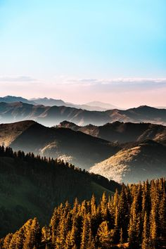 Wasatch Mountain Layers