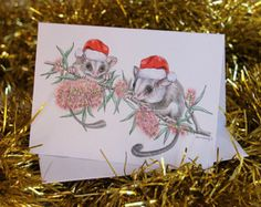Give an Australian Bush greeting card this year of Australian Feathertail Gliders and bottle brush flowers. From original art work by Melbourne artist. Christmas Decorations Australian, Australian Christmas Cards, Aussie Christmas, Christmas Hat, Christmas Ideas, Christmas Cross, Simple Christmas, Australian Gifts, Australian Bush