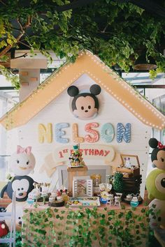 Baby Mickey Themed Party