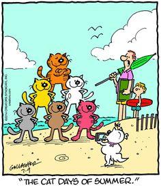 Heathcliff Cartoon for Jul/09/2014