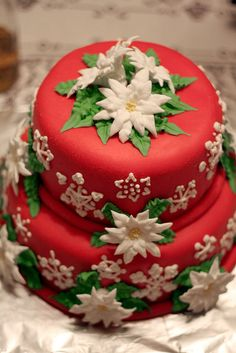 Christmas Cake....good idea for Christmas day as bday cake for Jesus and have family sing happy bday