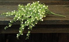 Adding our Hanging Baby's Breath to your home will lend a light and airy touch to decor!The delicate white blossoms and lush greenery are great for spring and summer accents. Kp Creek Gifts, Primitive Crafts, Primitive Decorations, Small White Flowers, Gold Wood, Lush, Breathe, Things That Bounce, Greenery
